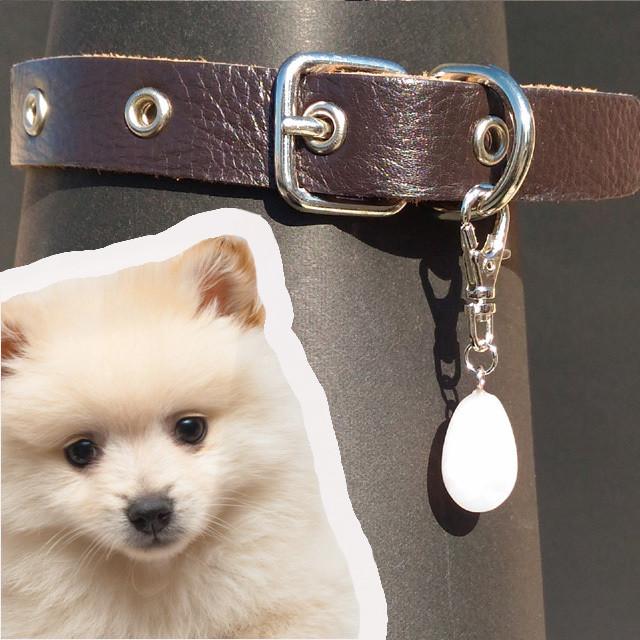ローズクォーツ雫:犬用首輪チャーム
