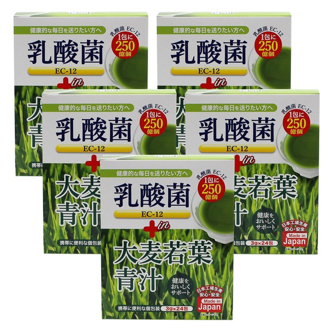 乳酸菌EC-12 プラス 大麦若葉青汁 3g×24包【5箱セット】たっぷり乳酸菌!1包に250億個