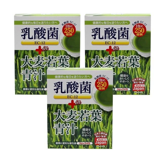 乳酸菌EC-12 プラス 大麦若葉青汁 3g×24包【3箱セット】たっぷり乳酸菌!1包に250億個