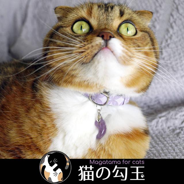 猫の勾玉とは?