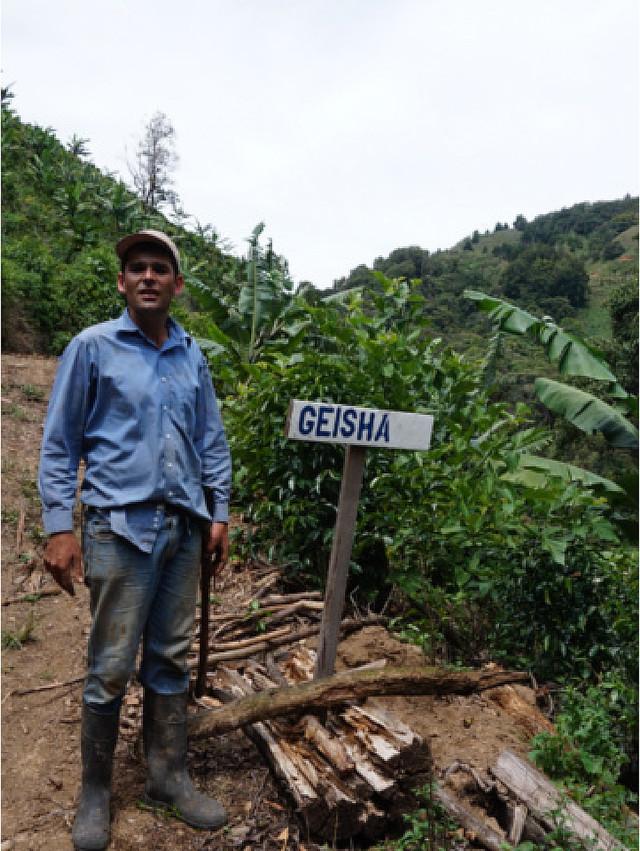 Costa Rica La Lia Pie San DFW