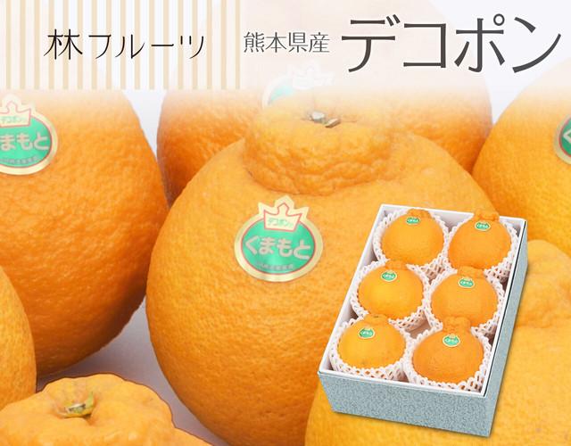 熊本県産 デコポン6玉(計約1.8㎏)〔送料無料、デコポン、不知火、柑橘、詰め合わせ、贈答用〕