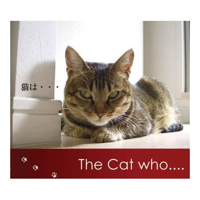 【送料無料】ミニフォトブック The Cat who.... 猫のアイシス (ザ キャット フー 猫ブログ本 猫 ねこ ネコ 書籍 贈り物 プレゼント ギフト GIFT)