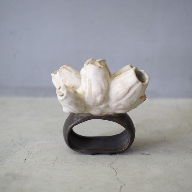 Barnacle Napkin Ring