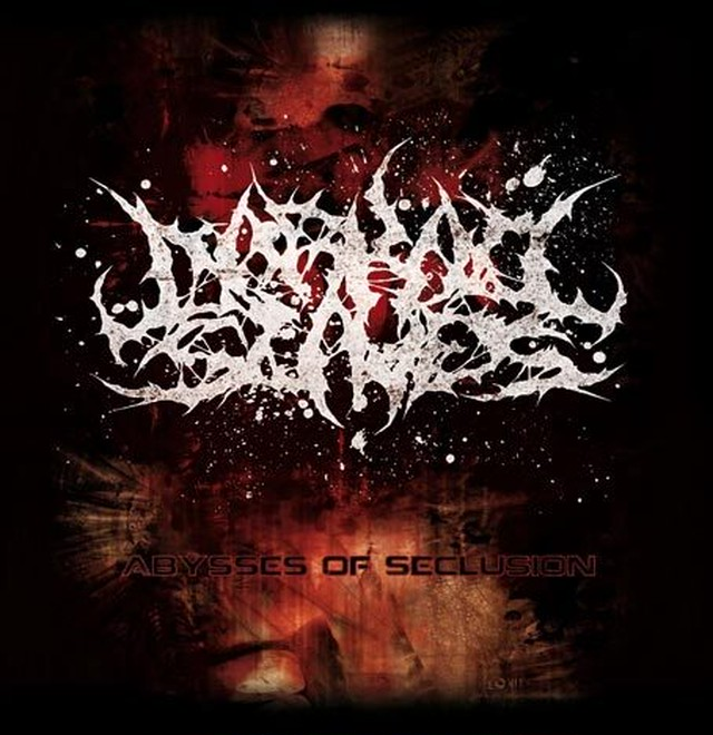【USED】Darkall Slaves / Abysses Of Seclusion