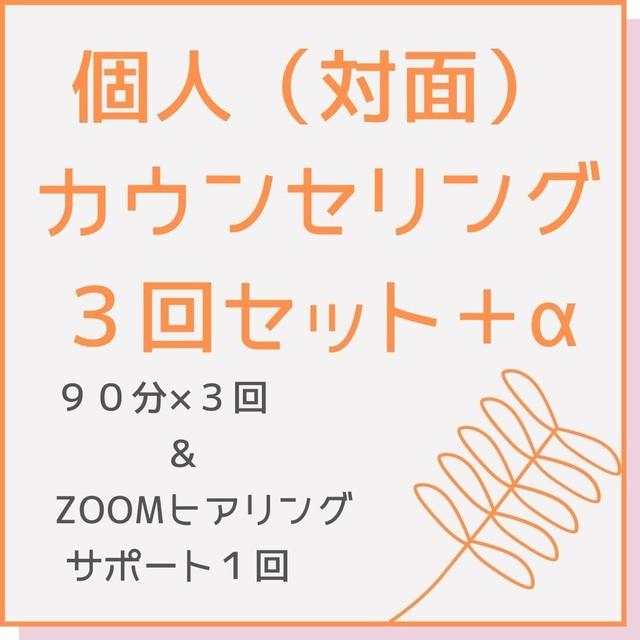 個人カウンセリング/対面・90分 × 3回+α
