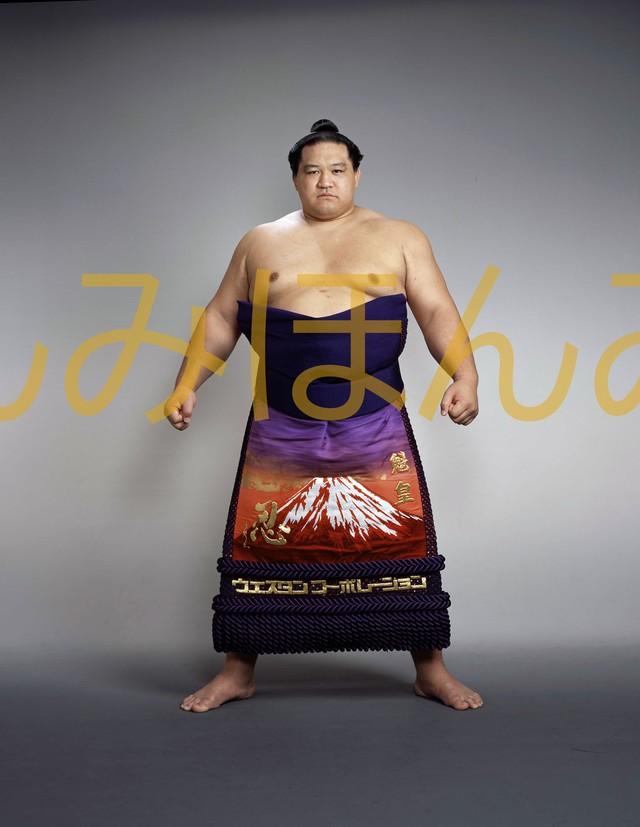 平成8年9月場所全勝 横綱 貴乃花光司関(15回目の優勝)