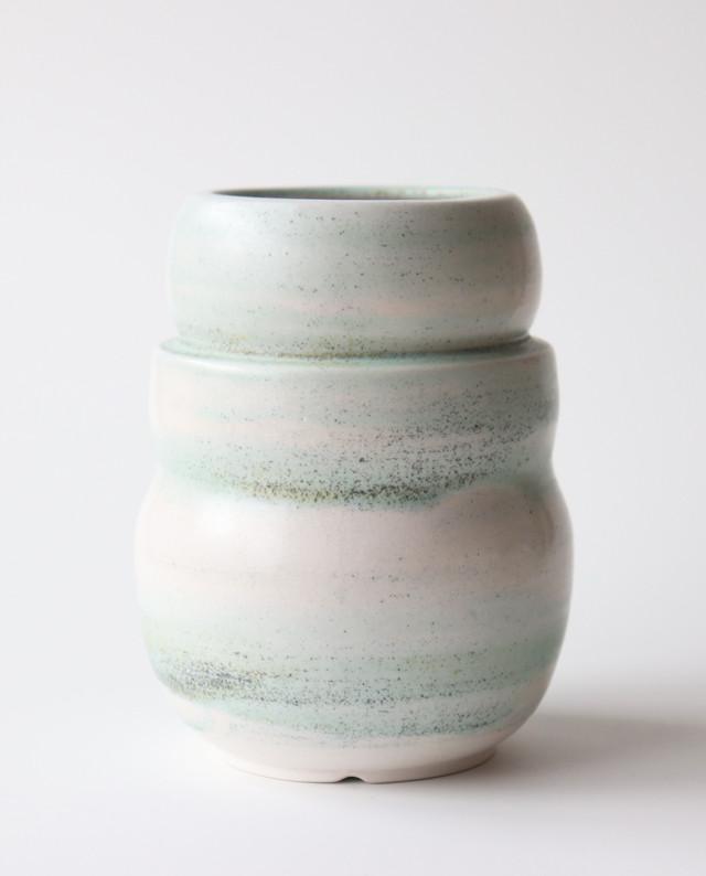 pot. 雪ダルマ(砂漠ブルー) 植木鉢, 植物