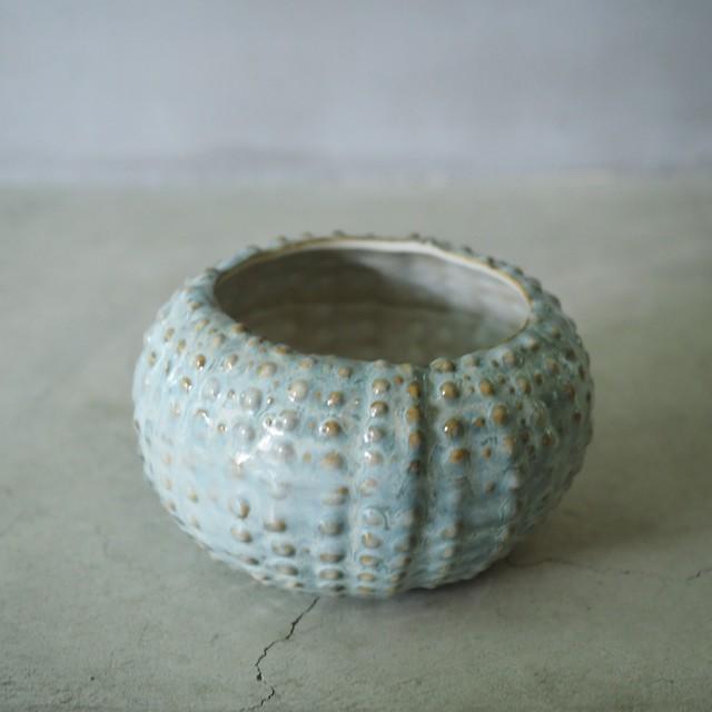 Urchin Soup Bowl