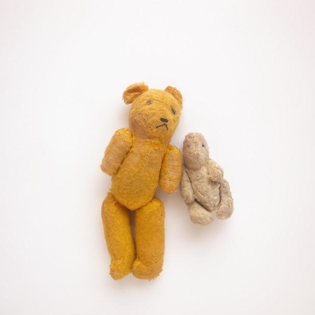 Teddy bear / Pair