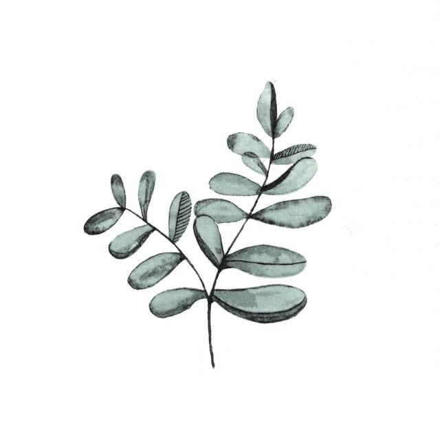 北欧【Ib Laursen】バラ売り1枚 ランチサイズ ペーパーナプキン Eucalyptus Branch ホワイト ユーカリ