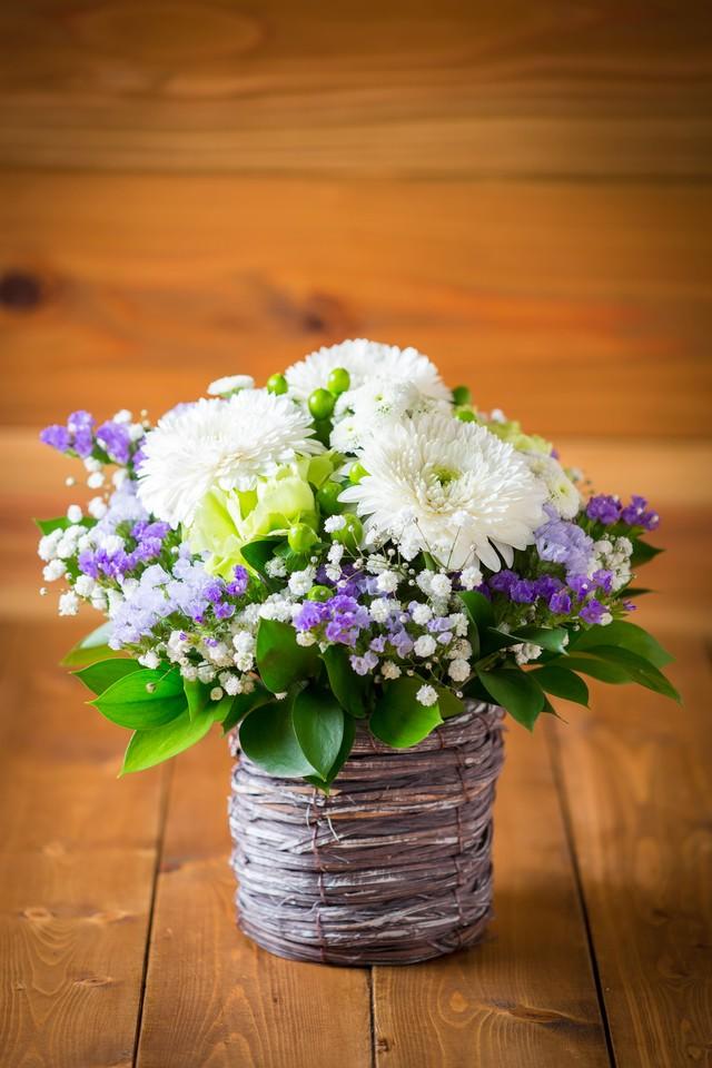 【お盆・お供え・仏花】【お茶とお花のセットBOX B】〈お茶2種類〉