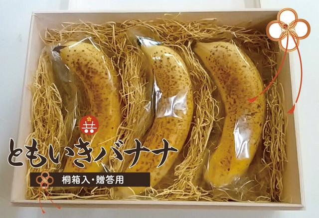 ともいきバナナ (3本)桐箱入り