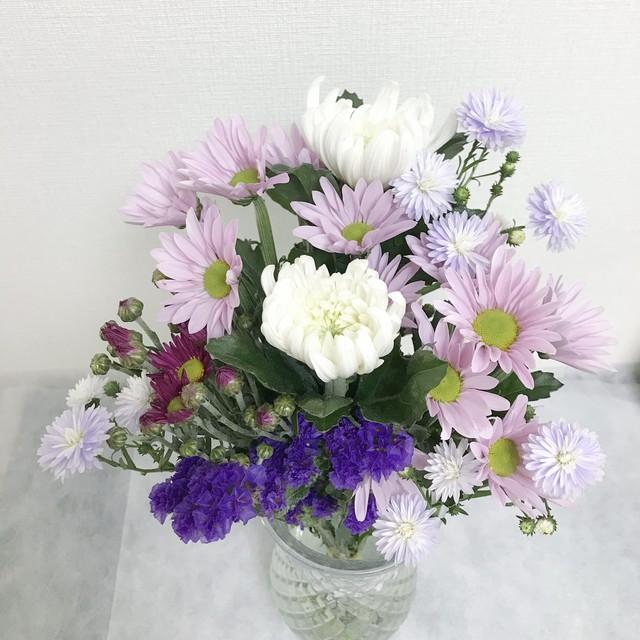 仏花の定期便 月2回コース ¥1,200/回