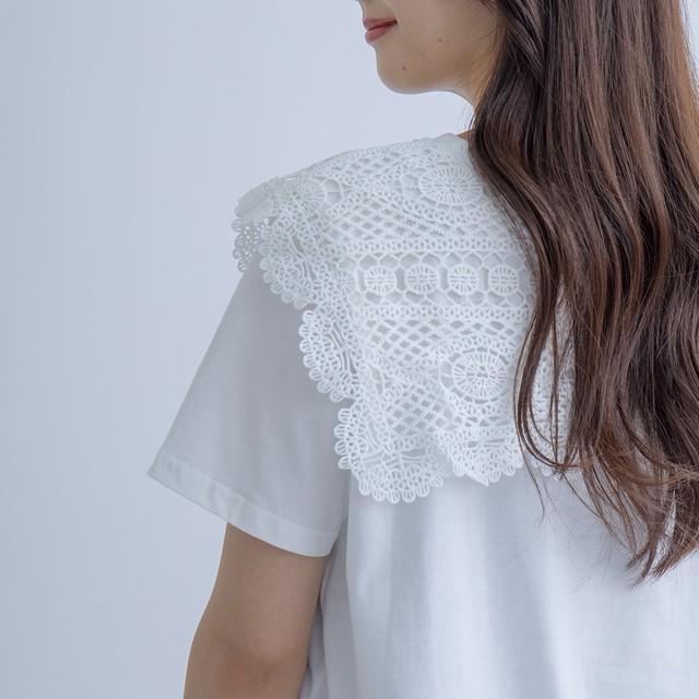 レース衿Tシャツ FLM71270