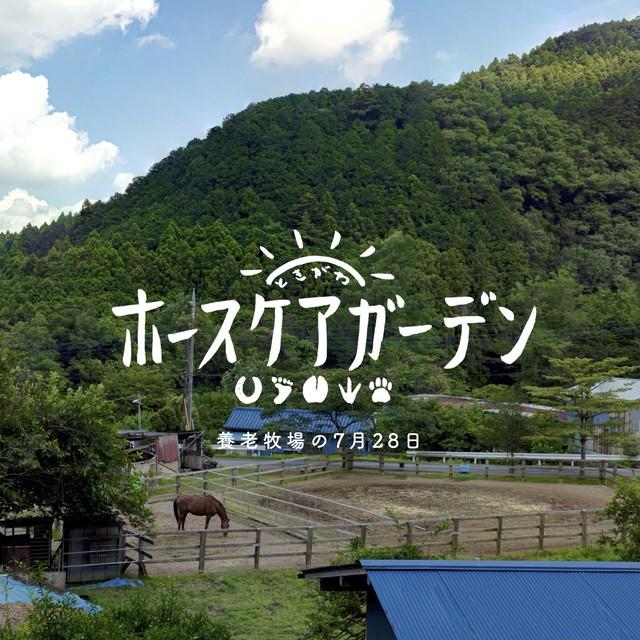 【受注生産】写真集「ときがわホースケアガーデン」~養老牧場の7月28日~
