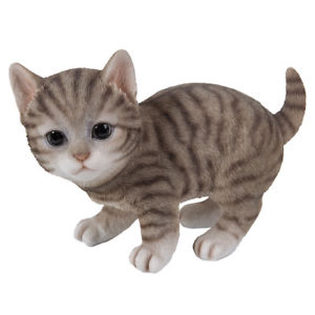 【送料無料】グレーライフサイズ#;grey tabby kitten cat playing  collectible statue life size 8034;l