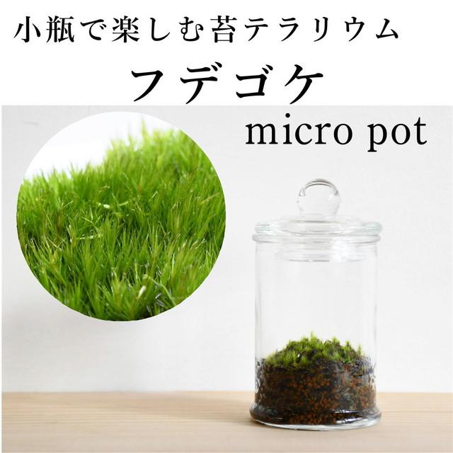小さな苔の森 フデゴケ micro pot ◆柔らかな手触り【苔テラリウム】