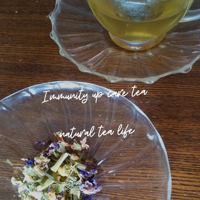 免疫力UPに「Immunity up care tea」Sサイズ