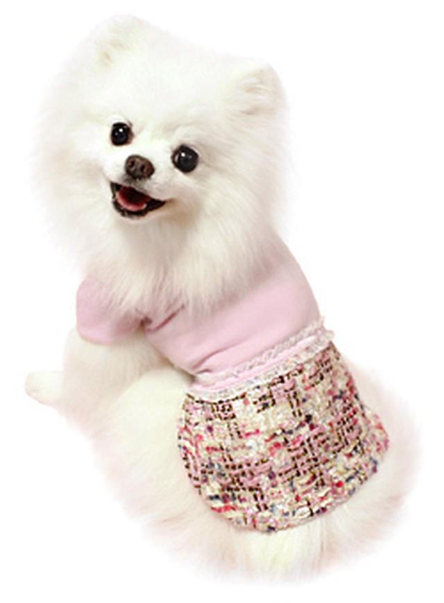 犬の生活 16AW シャネルツイードワンピ