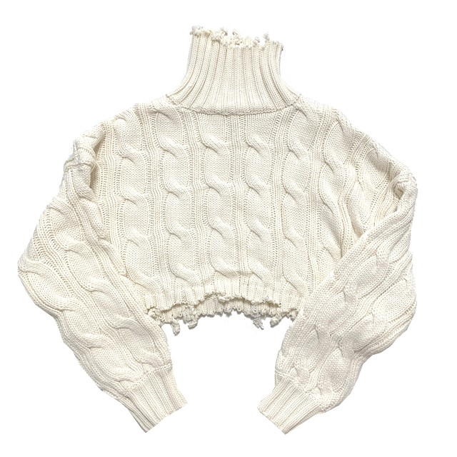 Ripped Cropped Turtle Knit