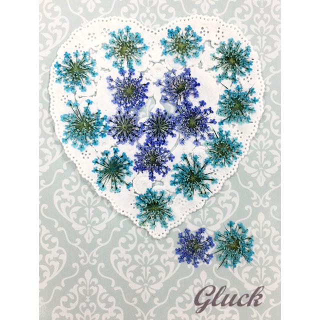 コンパクト押し花 ハートフルレースフラワー(ブルー系) 少量をパックにしてお届け! 押し花素材