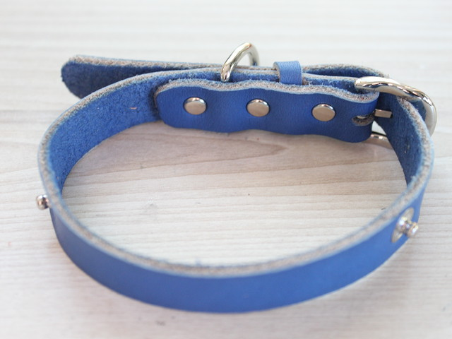 """WanDelen"" Dog Necklace (本体 blue)"