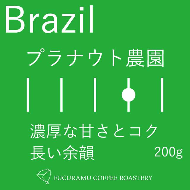 ブラジル プラナウト農園【フルシティ】200g
