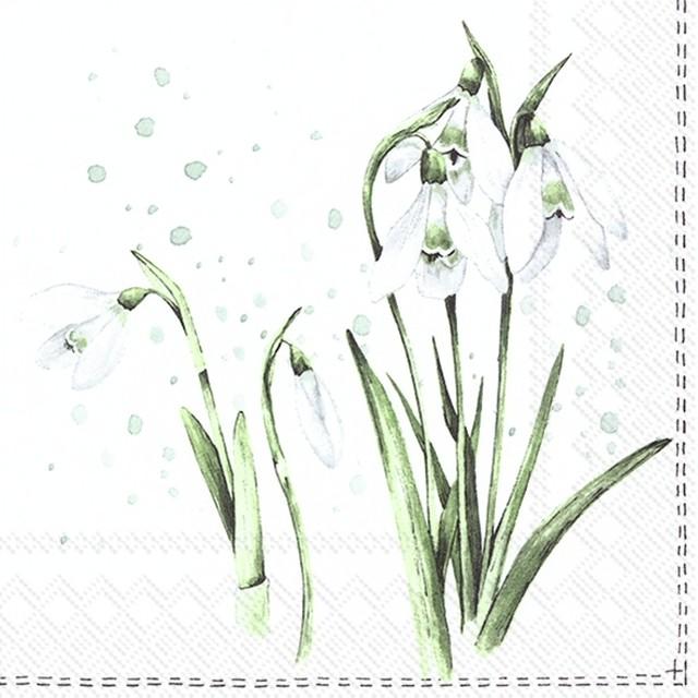2021春夏【IHR】バラ売り2枚 ランチサイズ ペーパーナプキン SPRING GREETINGS ホワイト
