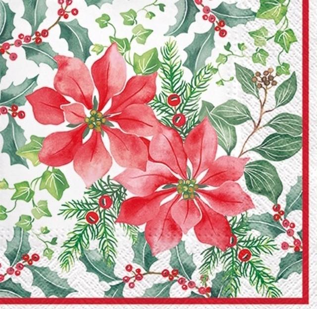 【PAW】バラ売り2枚 ランチサイズ ペーパーナプキン BEAUTIFUL POINSETTIA レッド×グリーン