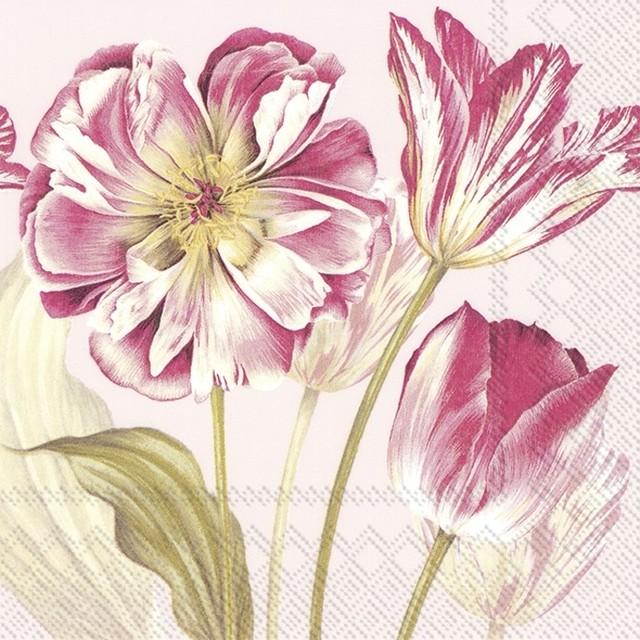 2021春夏【IHR】バラ売り2枚 ランチサイズ ペーパーナプキン MAJESTIC TULIPS リネンxローズ