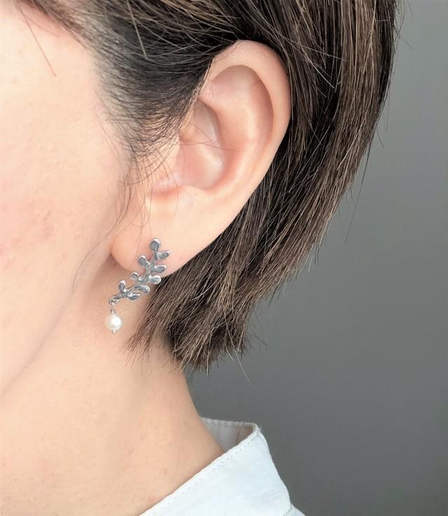 leaf pierce  002