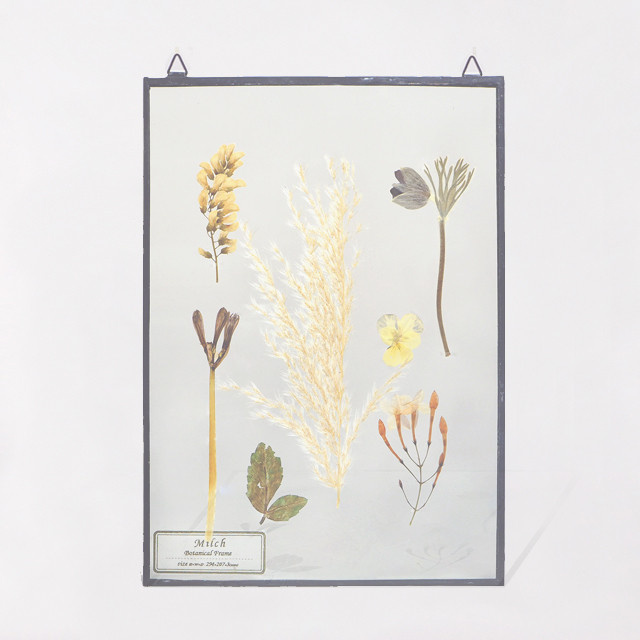 Botanical Frame L015 - Black
