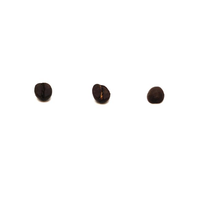 【共和コーヒー】ブルカ スノートップ 200g
