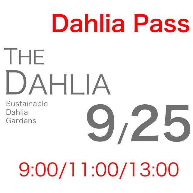 9月25日「THE DAHLIA」摘み採り園チケット
