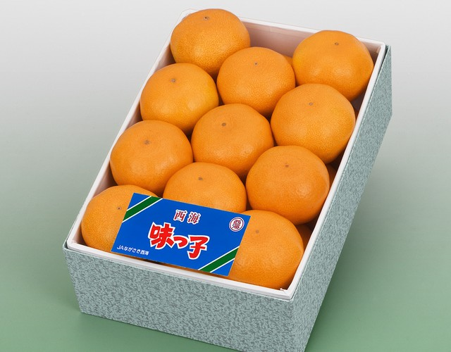 長崎県産 味っ子みかん 化粧箱〔送料無料 詰め合わせ みかん 贈答用〕