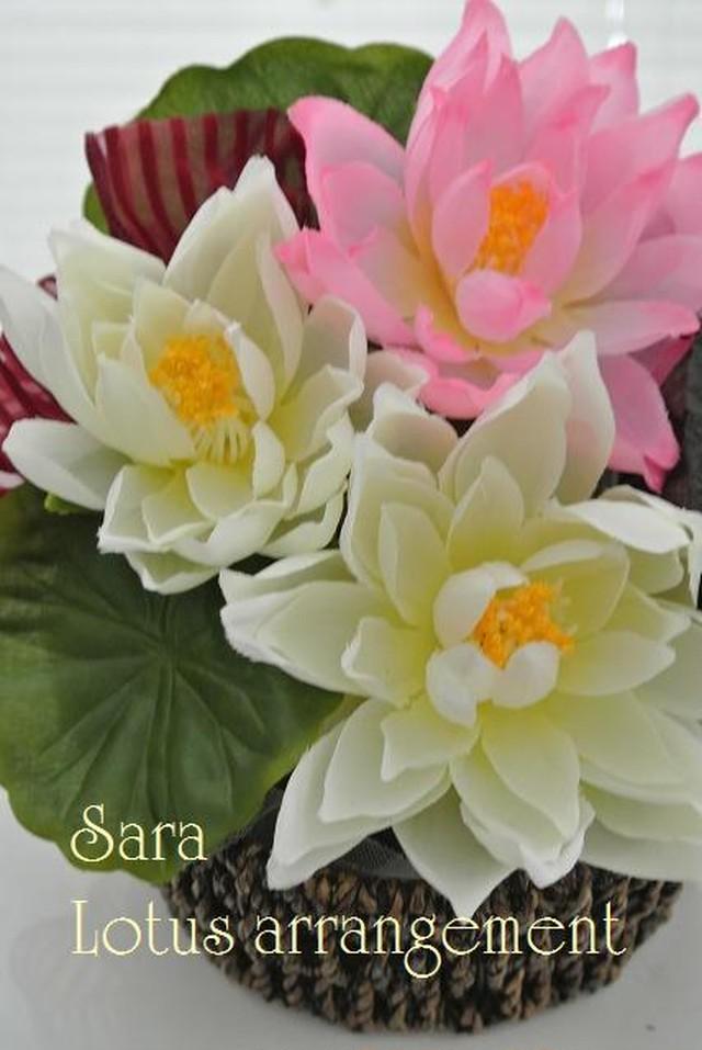 Lotusアレンジ
