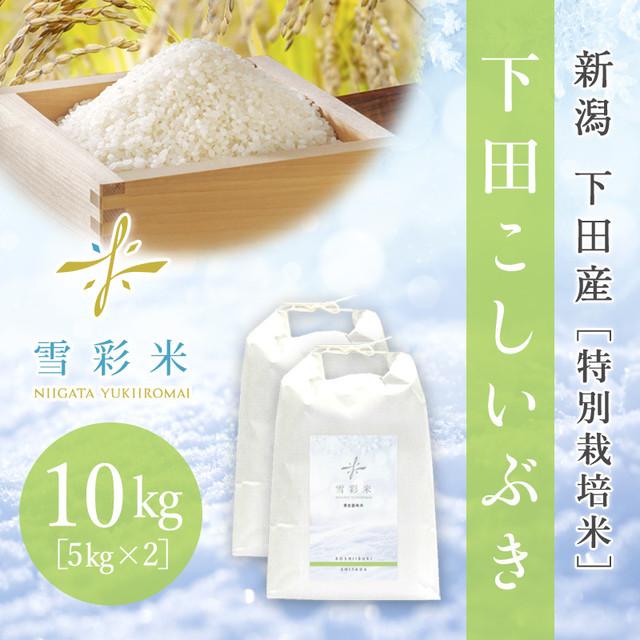 【雪彩米】下田産 特別栽培米 令和2年産 下田こしいぶき 10kg