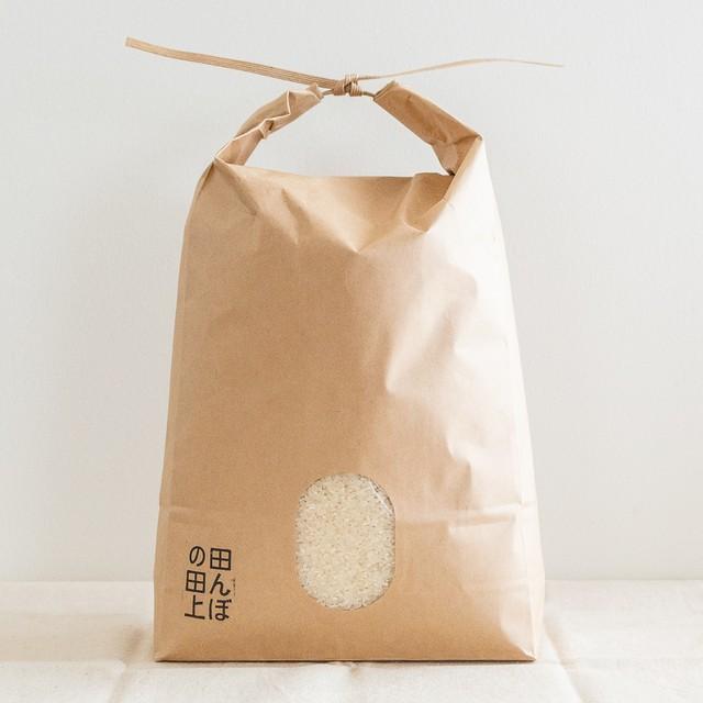 【減農薬】令和元年産 特別栽培米コシヒカリ 5kg