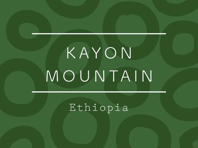 【お得!500g】エチオピア / KAYON MOUNTAIN Washed