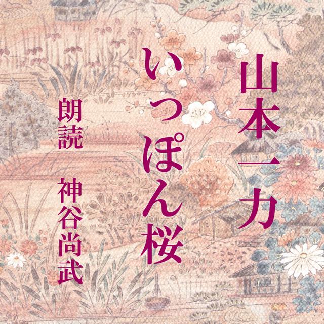 [ 朗読 CD ]いっぽん桜  [著者:山本一力]  [朗読:神谷尚武] 【CD2枚】 全文朗読 送料無料 文豪 オーディオブック AudioBook
