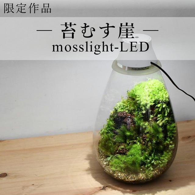 【現物販売・苔テラリウム】苔むす崖mosslight-LED