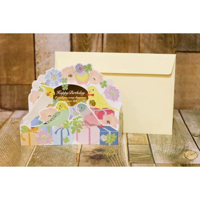 メッセージカード封筒&レターセット【インコ/お誕生日カード】/浜松雑貨屋 C0pernicus