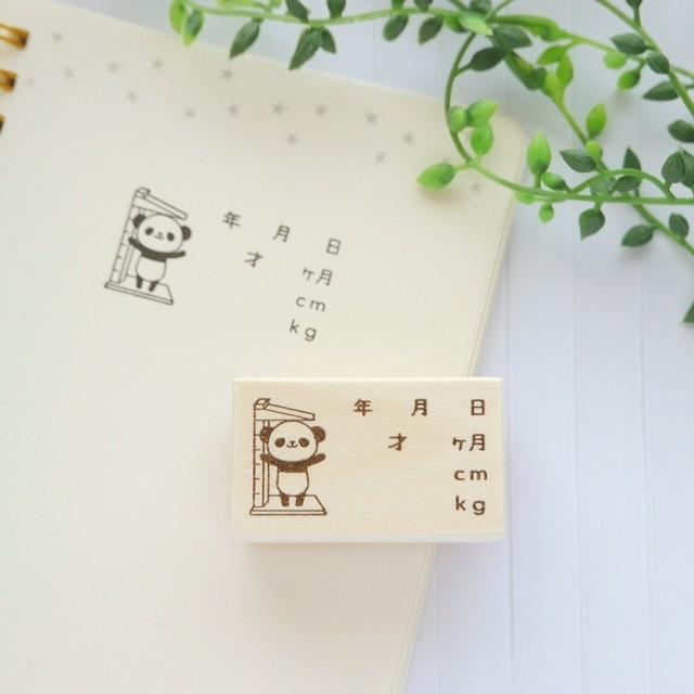 【大サイズ】パンダの成長記録スタンプ/はんこ(育児日記、連絡帳、アルバムに♪)