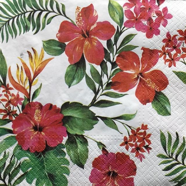 【PAW】バラ売り2枚 ランチサイズ ペーパーナプキン HAWAIIAN FLOWERS ホワイト