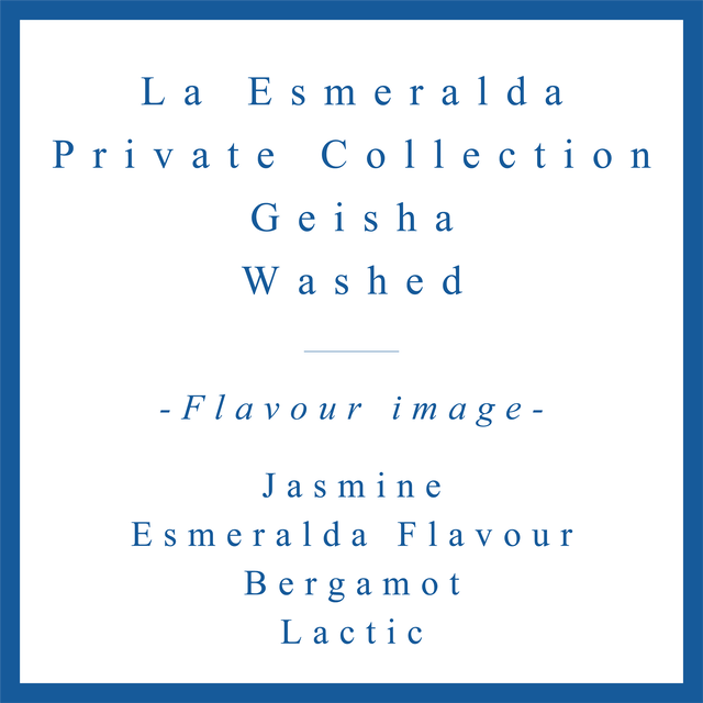 La Esmeralda Private Collection Geisha Washed
