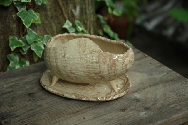 COCO植木鉢(三つ足)⑦【佐野 有子】
