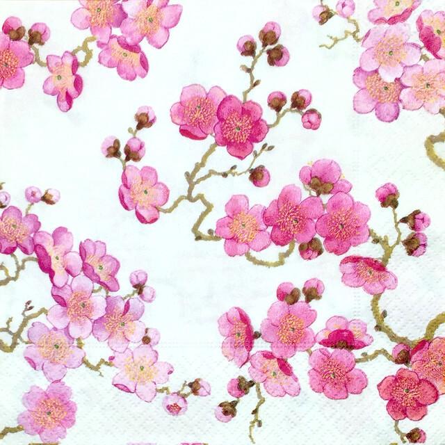 【Caspari】バラ売り1枚 ランチサイズ ペーパーナプキン PLUM BLOSSOM パール