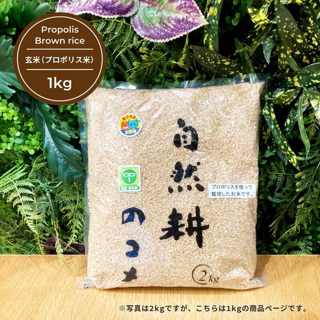 玄米(プロポリス米) 1kg