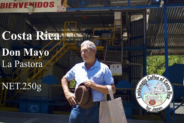直接現地に出向き生産者から買付けたコーヒー/250g/ドンマヨ・アナエロビコ ナチュラル/コスタリカ